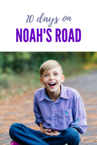 ten days on noah's road erin whitmer
